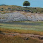 'Wattle Tree, Bald Hill' oil on board, 120 x 143cm, $7,800
