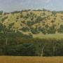 Phillip Cook - Landscape Near Mingenew