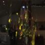 Miik Green – xylem series haplostele