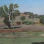 Phillip Cook – Bindoon Landscape