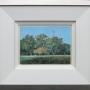 Phillip Cook – Helena River Reserve – oil on board, 31 x 36cm (framed), $1650